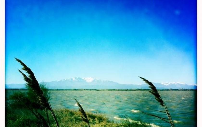 Location de vacances - Appartement à Bompas - le massif du mont Canigou et l'étang de Canet