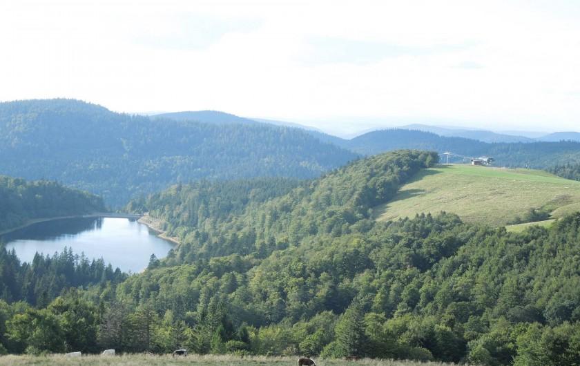 Location de vacances - Chalet à La Bresse - Lac de la Lalande