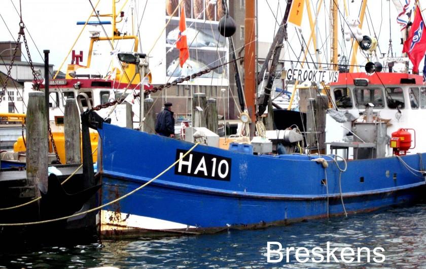 Location de vacances - Maison - Villa à Nieuwvliet - Le port de Breskens, a 5 km