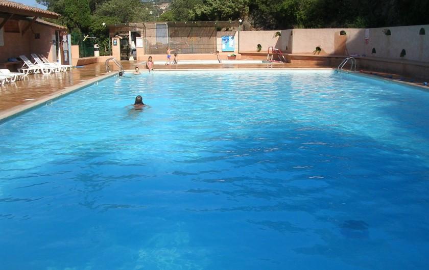 Location de vacances - Maison - Villa à Bormes-les-Mimosas - Piscine Domaine