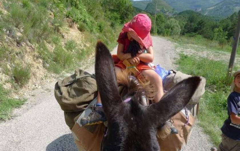 Location de vacances - Camping à Éourres - Randonnée avec un âne de bât