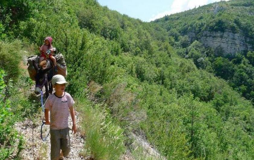 Location de vacances - Camping à Éourres - Séjours complicité, avec un âne pour vos vacances!