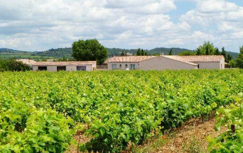 Location de vacances - Gîte à Trausse - maison en bordure des vignes