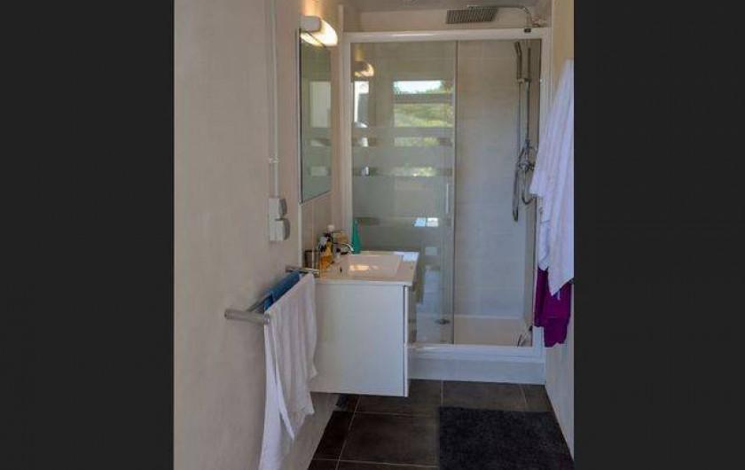 Location de vacances - Roulotte à Pernes-les-Fontaines - 2em salle d'eau : douche, lavabo, attenant à l'espace jacuzzi
