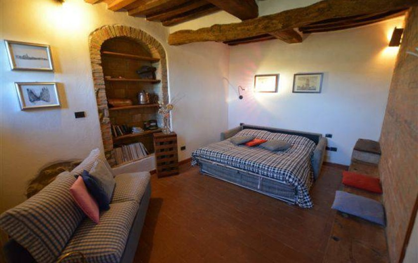 Location de vacances - Appartement à Radicondoli - LIVING ROOM  WITH  BED SOFA'