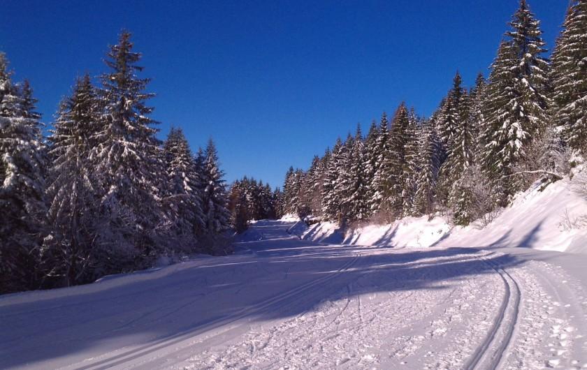 Location de vacances - Appartement à Gérardmer - pistes de ski de fond