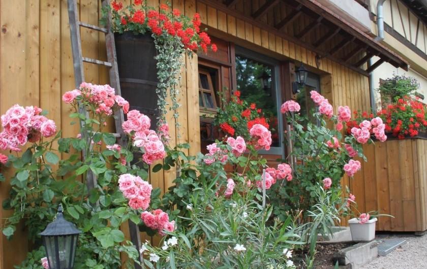 Location de vacances - Gîte à Nothalten - Dans la cour du gîte