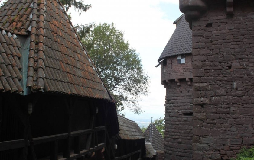 Location de vacances - Gîte à Nothalten - Le Haut Koenigsbourg