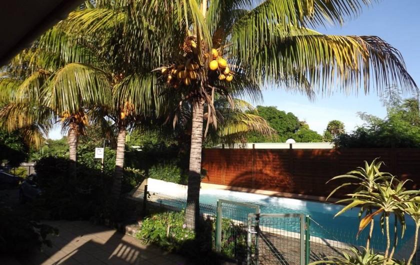 Location de vacances - Villa à Saint-Pierre - Piscine clôturée et bordée de cocotiers