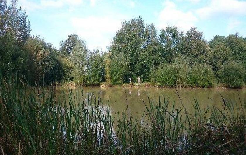 Location de vacances - Roulotte à La Chapelle-Blanche-Saint-Martin - Détente au bord de l'étang, Domaine de La Grangée (37)