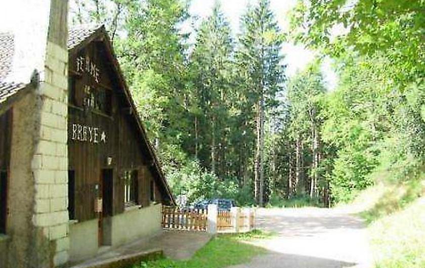Location de vacances - Chalet à Cornimont - chemin menant à la forêt pour de belles randonnées pédestres uniquement
