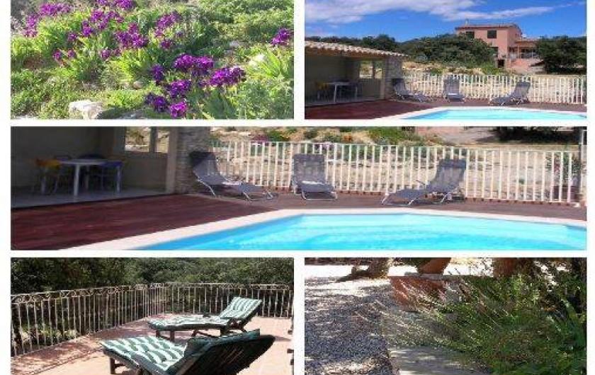 Location de vacances - Villa à Roche-Saint-Secret-Béconne - Vue des terrasses et de la piscine.