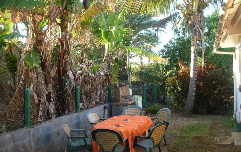 Location de vacances - Gîte à La Saline Les Hauts - le jardin à l'arrière du gîte