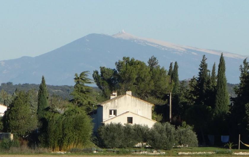 Location de vacances - Chambre d'hôtes à Saint-Geniès-de-Comolas - Le Mas d'Acanthe devant le Mont Ventoux