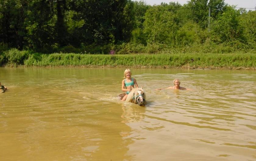 Location de vacances - Maison - Villa à Payrac - La baignade après un tour á cheval dans le lac du Colombié