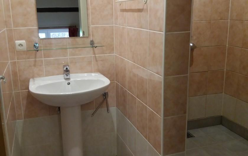 Location de vacances - Gîte à Haut-Fays - Maisonnette et accessoires pour enfants