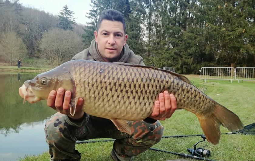 """Location de vacances - Gîte à Haut-Fays - Gîte """"La Maison"""" grande pièce à vivre pouvant accueillir 20 personnes"""