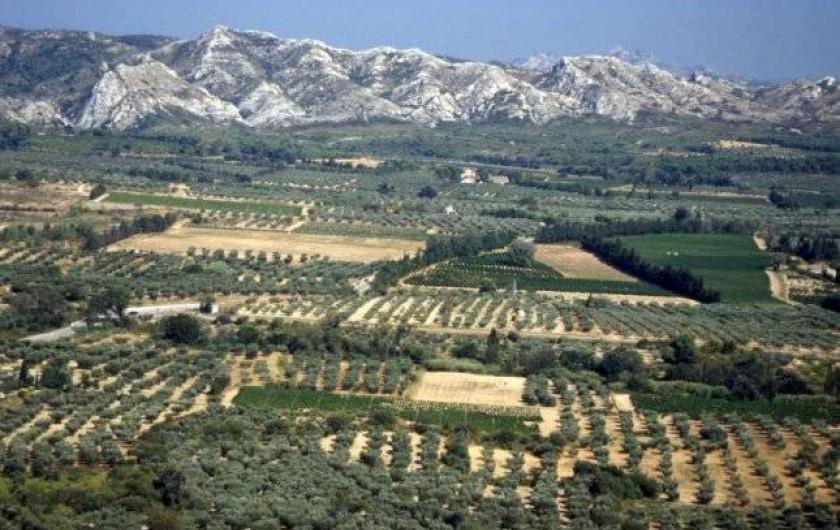 Location de vacances - Gîte à Mollégès - Les Alpilles 5 Kms