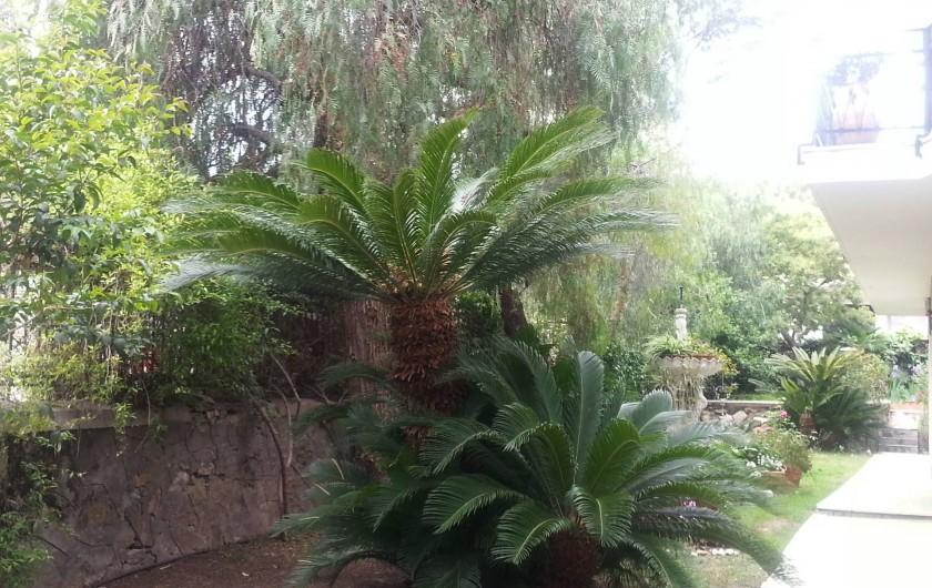 Location de vacances - Appartement à San Remo - Vue sur le jardin