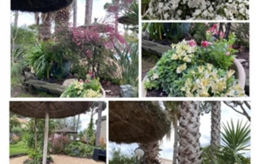 Location de vacances - Appartement à Argelès-sur-Mer - LA CUISINE