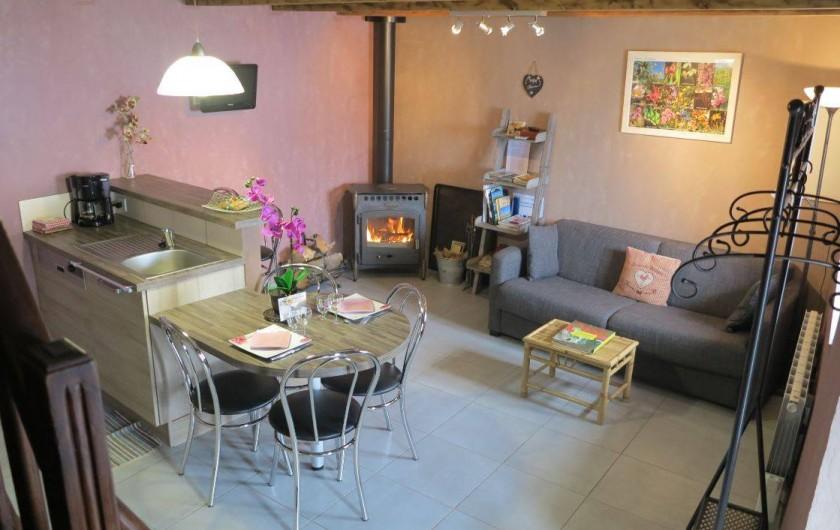 Location de vacances - Gîte à Saint-Pierre-de-Nogaret - Salon avec poêle à bois (bois fourni gratuitement)