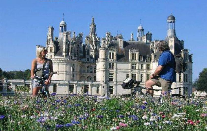 Location de vacances - Gîte à Crouy-sur-Cosson - CHAMBORD à 5 minutes