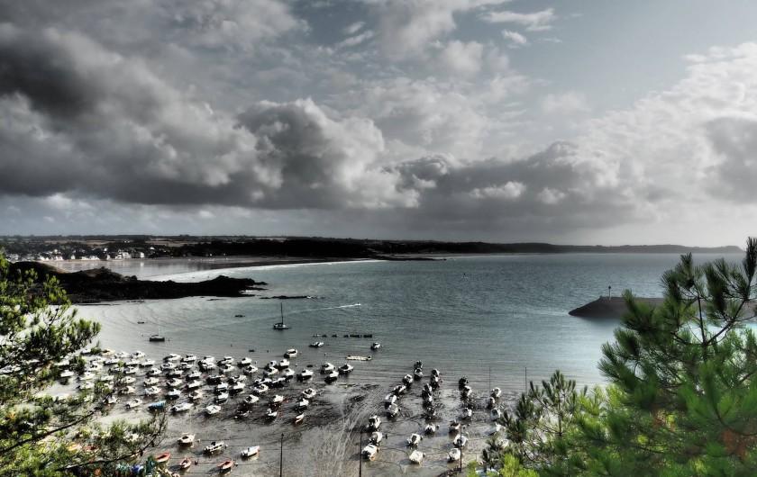 Location de vacances - Maison - Villa à Erquy - le port