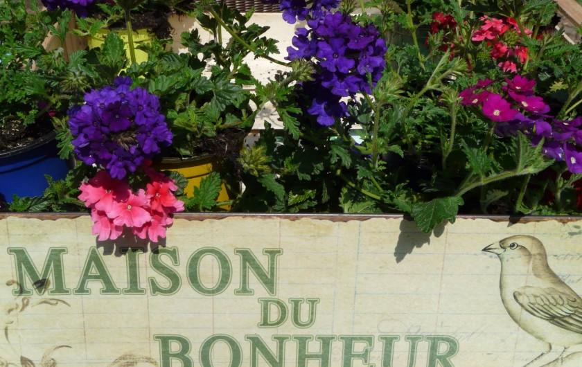 Location de vacances - Gîte à Ribeauville - Vous avez trouvé la destination idéale pour vos vacances !