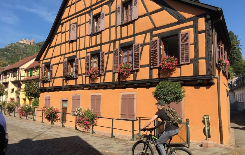 Location de vacances - Gîte à Ribeauville - Ribeauvillé: Perle du Vignoble de l'Alsace
