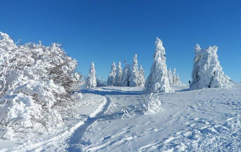 Location de vacances - Chalet à Basse-sur-le-Rupt - Paysage des crêtes Vosgiennes figé dans la neige