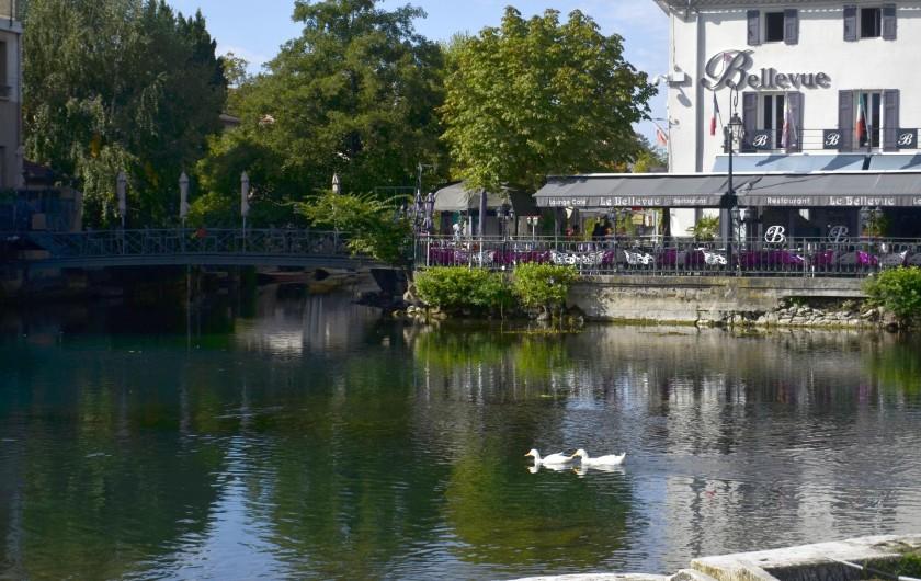 Location de vacances - Studio à L'Isle-sur-la-Sorgue - La Sorgue juste devant avec sa fraîcheur et ses canards