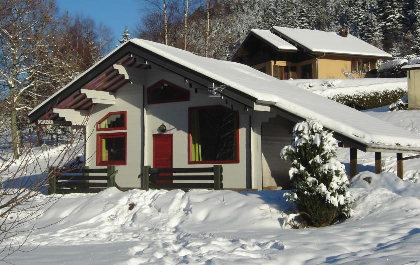 Location de vacances - Chalet à La Bresse - Chalet en hiver