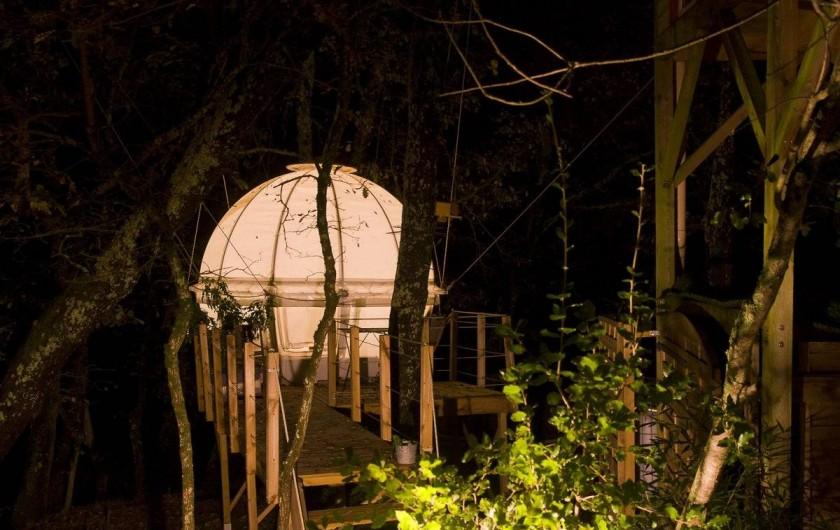 Location de vacances - Yourte à Barjac - Bulle dans les chênes avec un grand matelas rond de 2.50 m de diamètre
