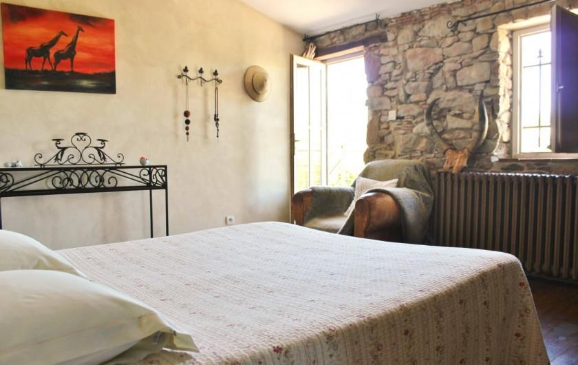 Location de vacances - Villa à Carcassonne - la savane