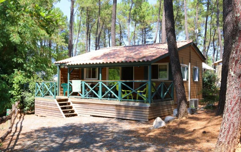 Location de vacances - Chalet à Joyeuse - Chalet Acacia