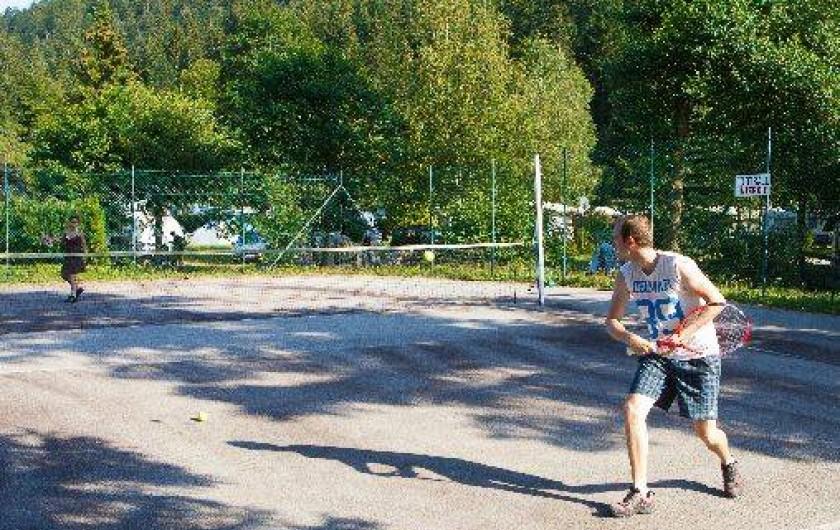 Location de vacances - Chalet à Xonrupt-Longemer - Halfcourt