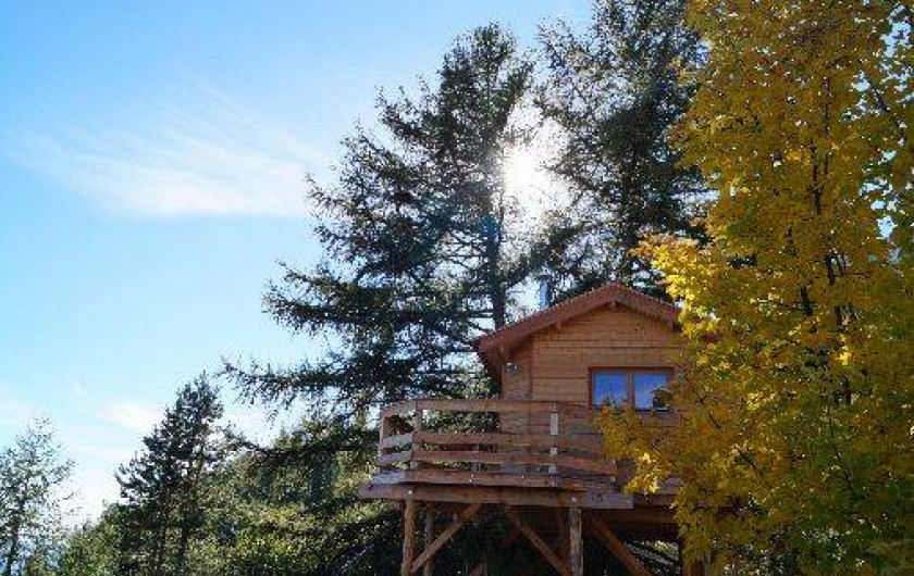 Location de vacances - Cabane dans les arbres à Gap