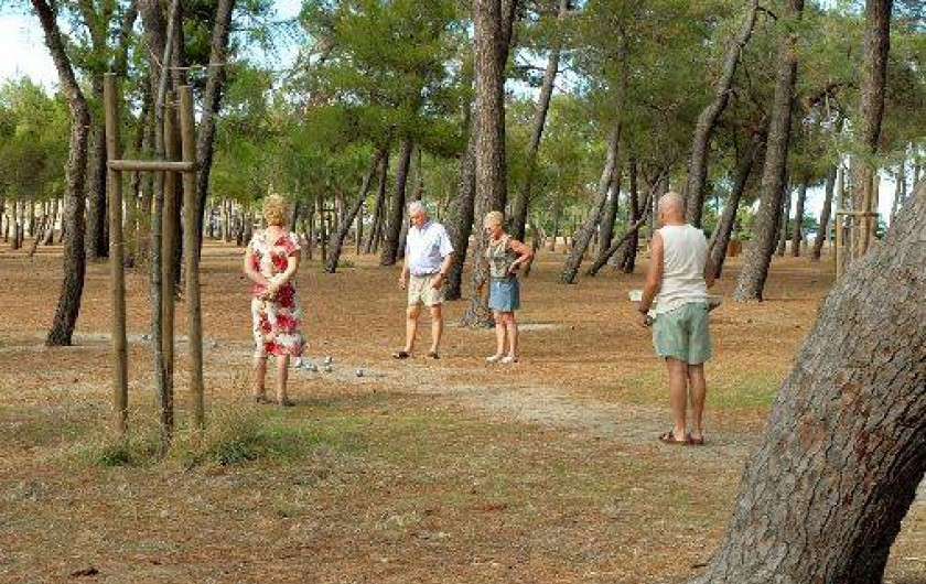 Location de vacances - Appartement à Argelès-sur-Mer - Le bois des pins