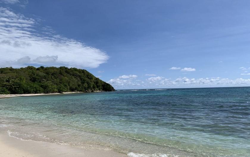 Location de vacances - Villa à Sainte-Anne - Plage de l'anse à Saint 10 mn à pieds