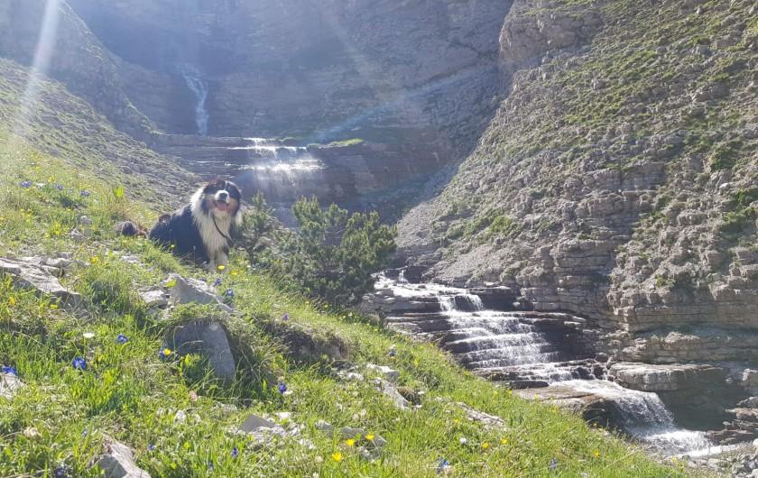 Location de vacances - Chalet à La Joue du Loup - Chalet Virginie - Pièce à vivre