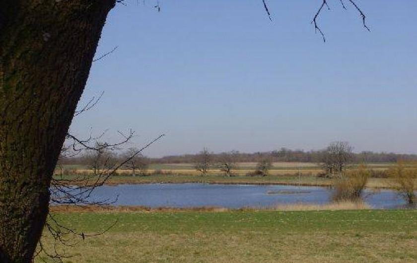 Location de vacances - Gîte à Outines - Etang réservé à la pêche et à l'observation des oiseaux
