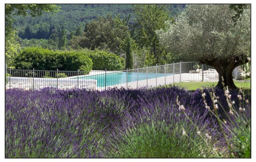 Location de vacances - Mas à Saint-Restitut - Une piscine bien protégée