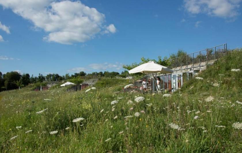 Location de vacances - Gîte à Sainte-Féréole - Pleine nature