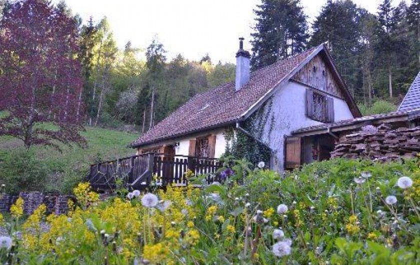Location de vacances - Chalet à Soultzbach-les-Bains