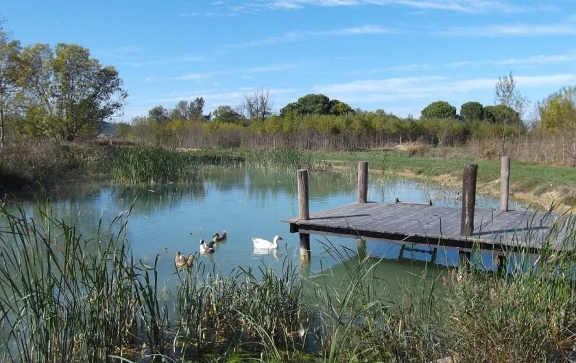 Location de vacances - Mas à Narbonne - Lac dans le Domaine