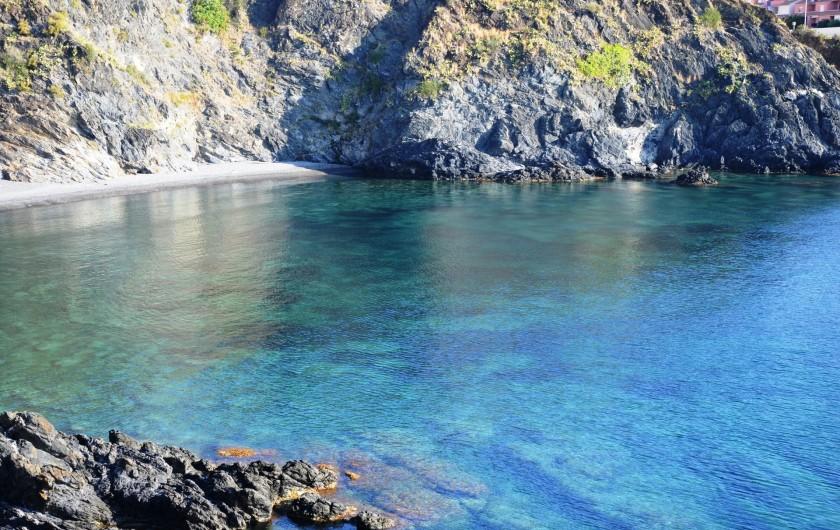 Location de vacances - Appartement à Cerbère - eau turquoise