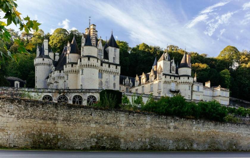 Location de vacances - Gîte à Seigy - Venez découvrir les plus beaux Châteaux de la Loire