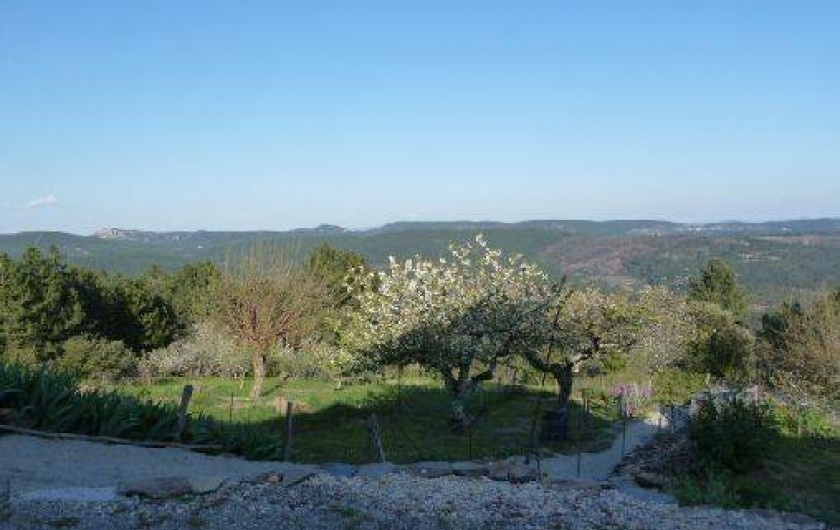 Location de vacances - Gîte à Malbosc - vue sur la foret