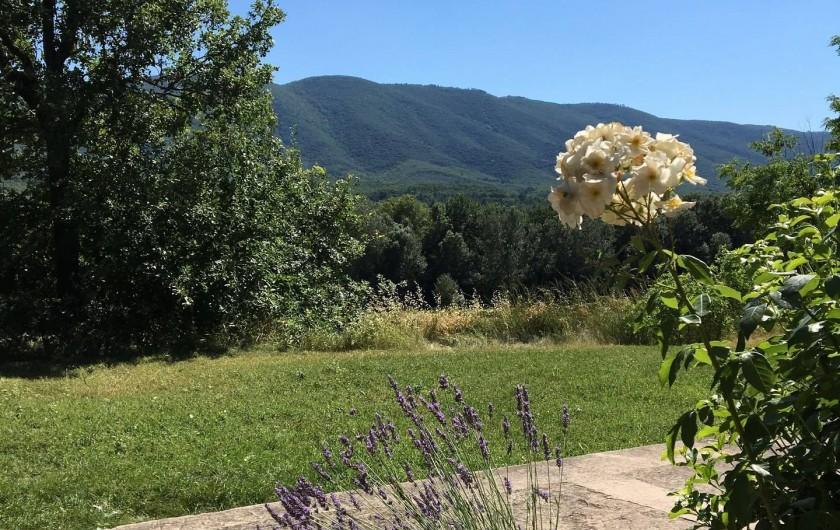 Location de vacances - Mas à Céreste - Jardin privatif du Mas des Lavandes, vue sur le Luberon