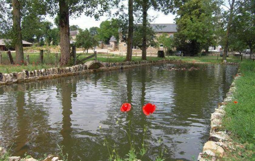 Location de vacances - Gîte à Roussennac - Mare aux canards du Mas
